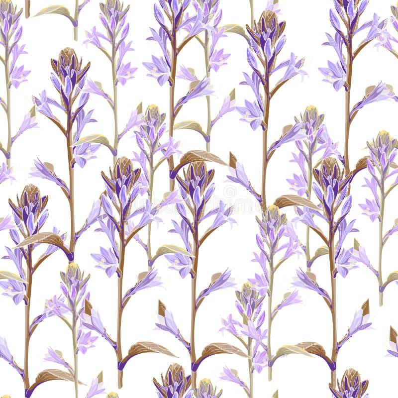 Modell för violetta exotiska blommor för mjukhet sömlös stock illustrationer