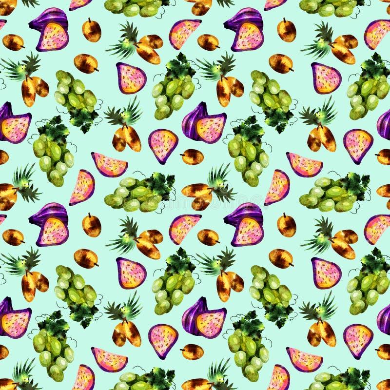 modell f?r tropisk frukt vektor illustrationer