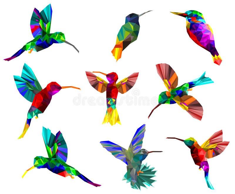 Modell med den låga poly färgrika kolibrin på vitbaksidajordning, isolerat djurt geometriskt, samling av fåglar begrepp, vektor vektor illustrationer