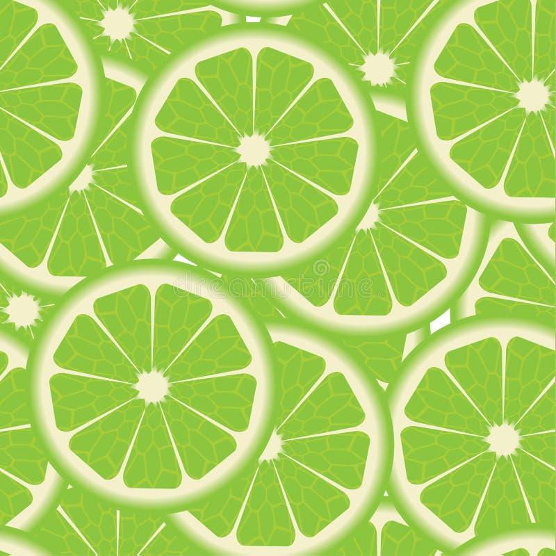 Modell med limefrukter vektor illustrationer