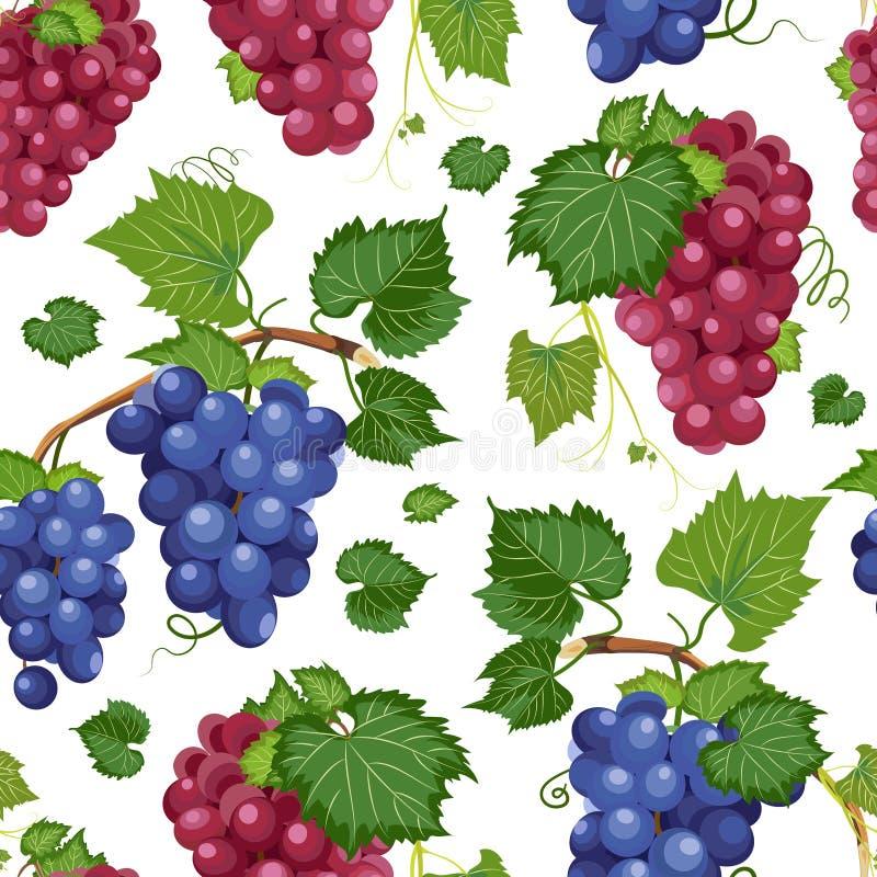 Modell och sidor för druvavinranka sömlös på vit bakgrund, ny organisk mat, rött och mörkt - blå bakgrund för druvagruppmodell stock illustrationer