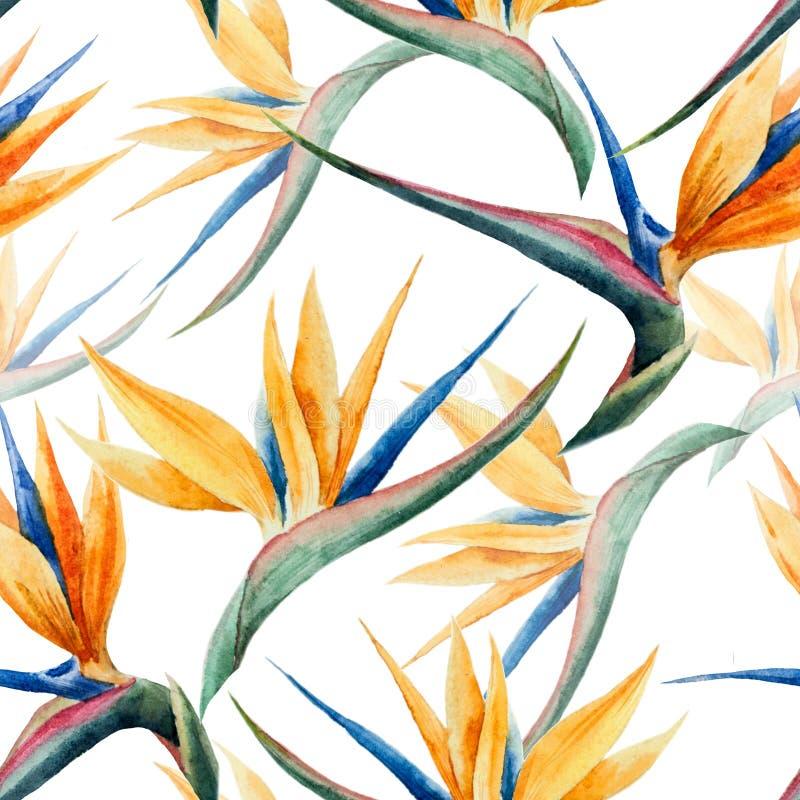 Modell vattenfärg, blomma royaltyfri illustrationer