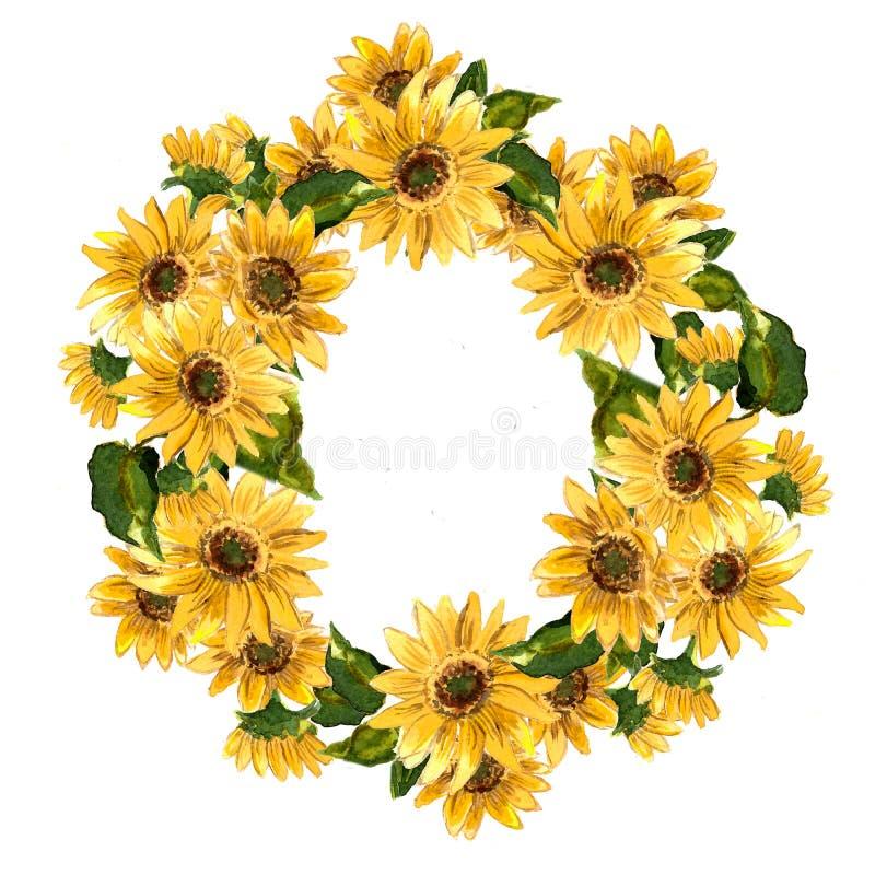 Modellen av blommande guling blommar solrosen som målas i vattenfärg stock illustrationer
