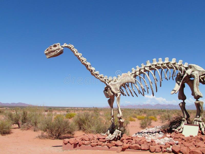 Modellen av ett dinosaurieskelett i sanden fotografering för bildbyråer