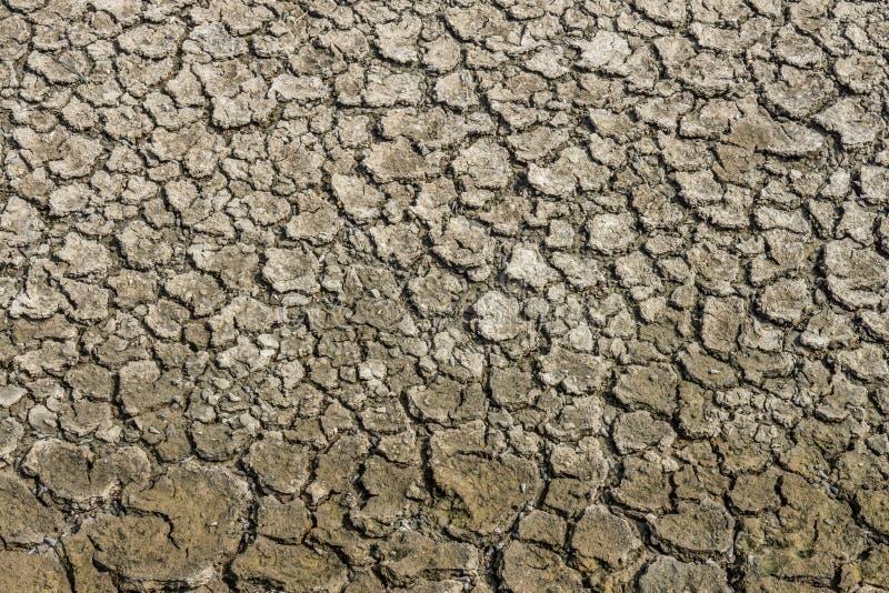 Modellen av sammandragningen och uttorkat tillstånd knäcker i torr jord arkivfoto
