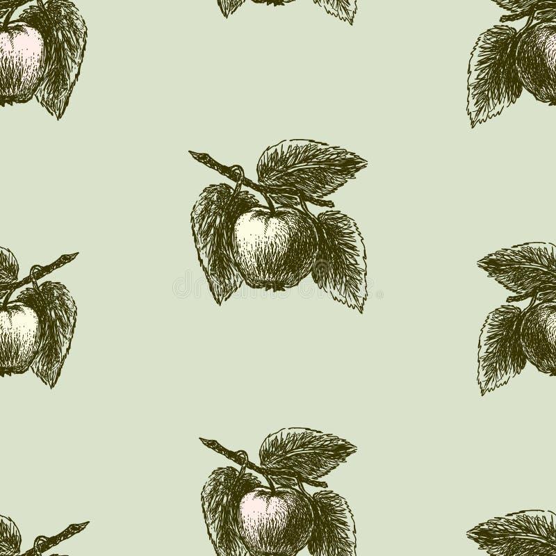 Modellen av skissar av äpplen på filialer stock illustrationer