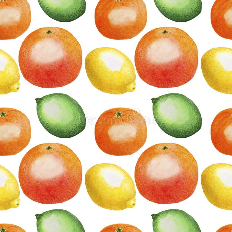 Modellen bär frukt citrus orange mat Digital för tropikerna för illustrationen för citronlimefruktvattenfärgen som den pappers- t stock illustrationer