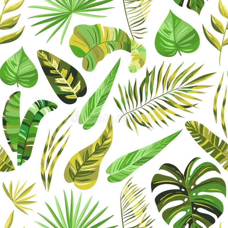 Modeller för tropisk djungel för vektor sömlösa vektor illustrationer