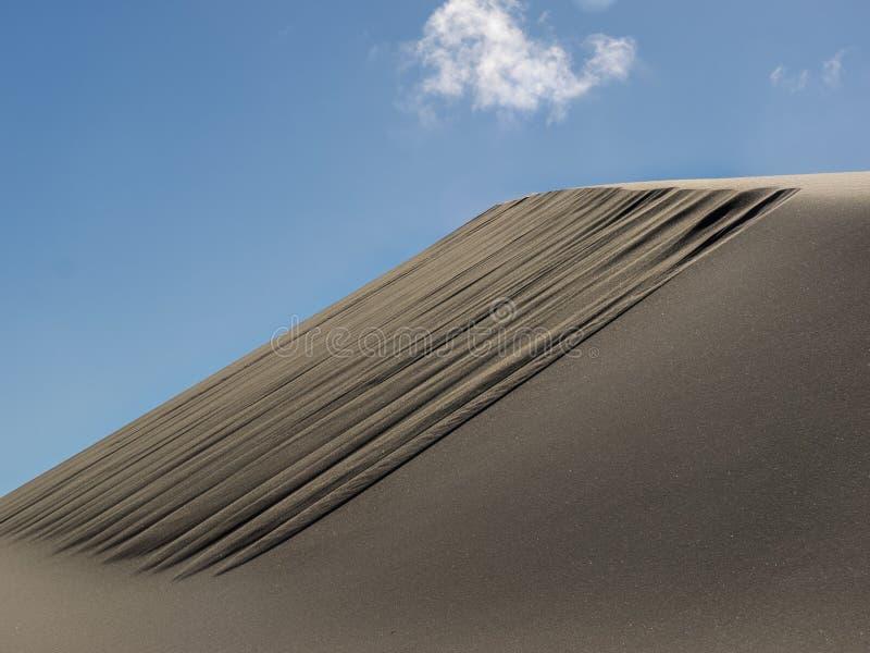 Modeller i sanddyn som formas av vind royaltyfri fotografi