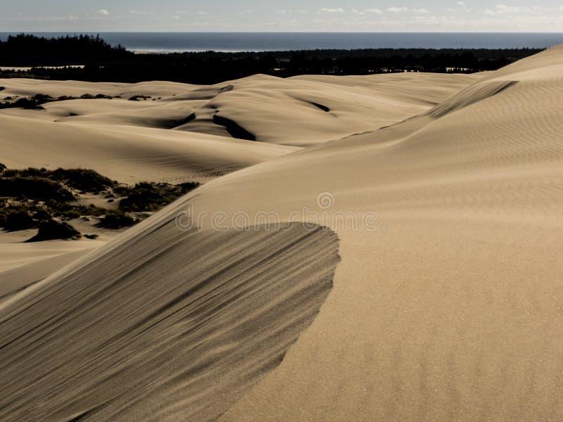 Modeller i sanddyn som formas av vind arkivbilder
