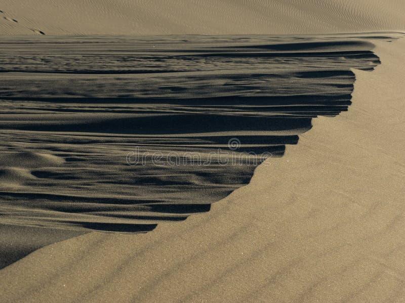 Modeller i sanddyn som formas av vind arkivfoton