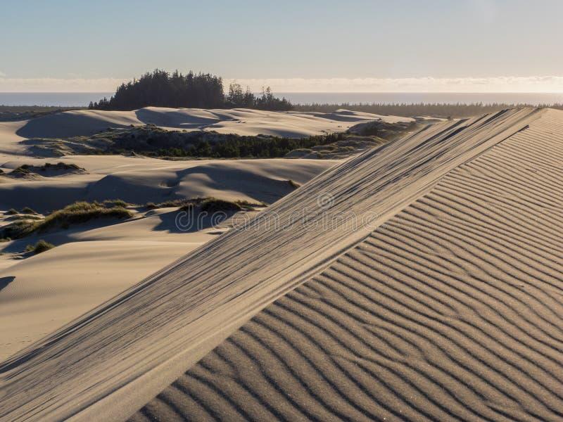 Modeller i sanddyn som formas av vind arkivbild
