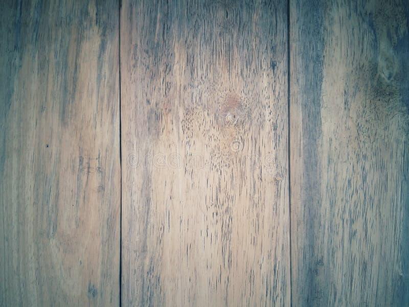 Modeller och texturer av trä royaltyfria foton