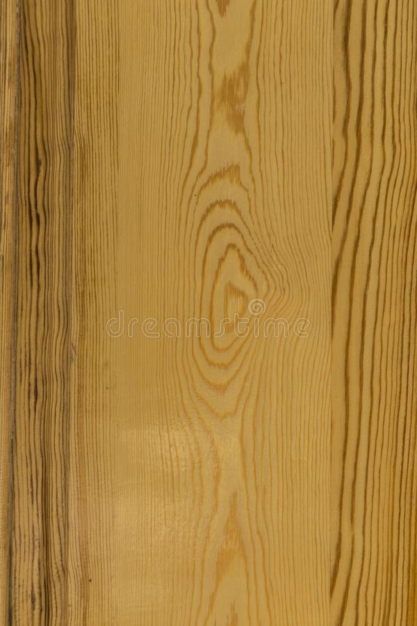 Modeller och texturer av trä, naturliga bruntsignaler royaltyfri foto