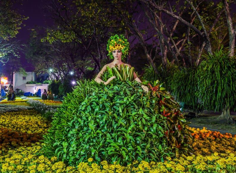 Modellera - den bärande trädklänningen för den kvinnliga dockan i natt royaltyfria bilder