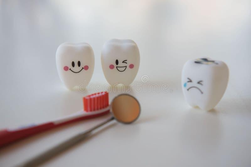 Modellera leksaktänder i tandläkekonst på en vit bakgrund royaltyfri bild