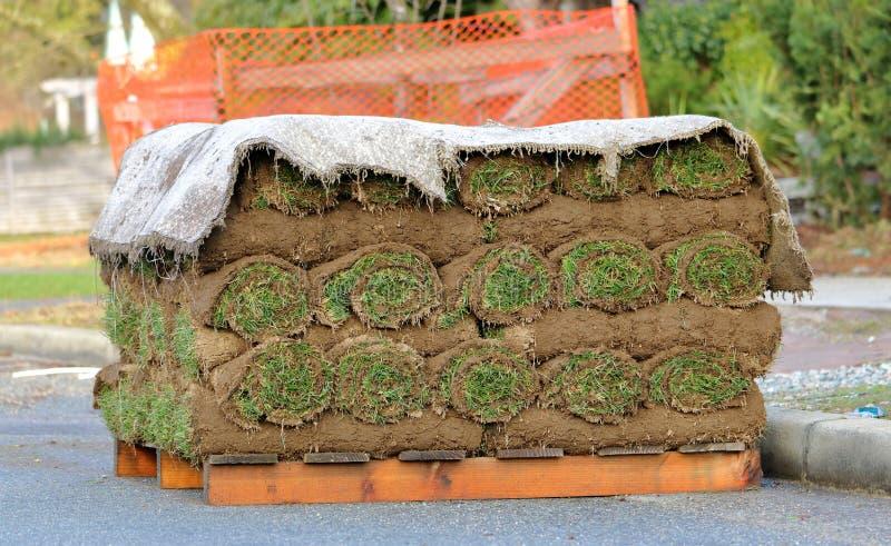 Modellerend Zode of Gras op Pallet stock fotografie