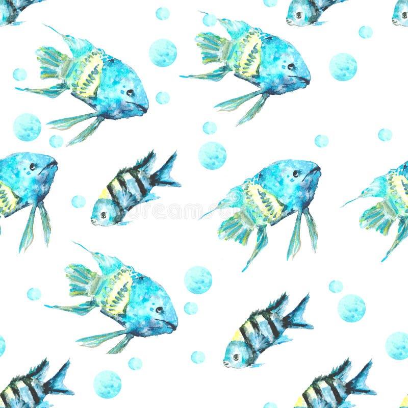 Modellfiskturkos royaltyfri illustrationer