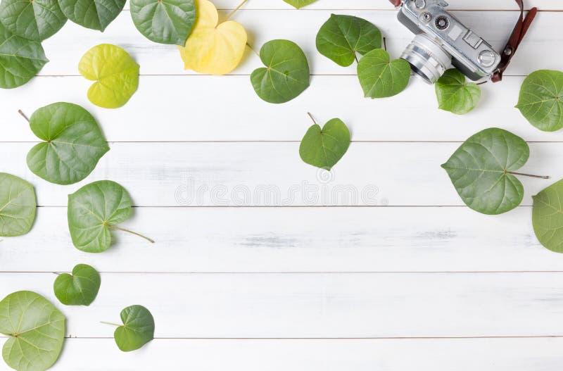 Modelli la macchina fotografica verde dell'annata e della foglia a forma di cuore immagini stock libere da diritti