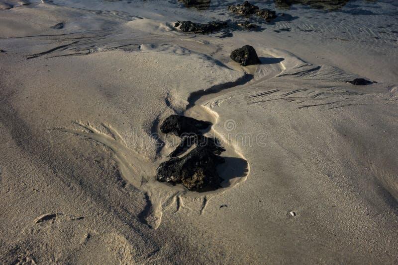 Modelli nella sabbia alla scarsa visibilit? nel parco naturale in Corralejo Fuerteventura Spagna immagine stock