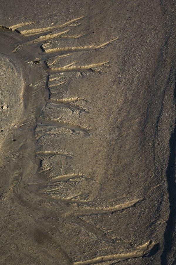 Modelli nella sabbia alla scarsa visibilit? nel parco naturale in Corralejo Fuerteventura Spagna fotografie stock