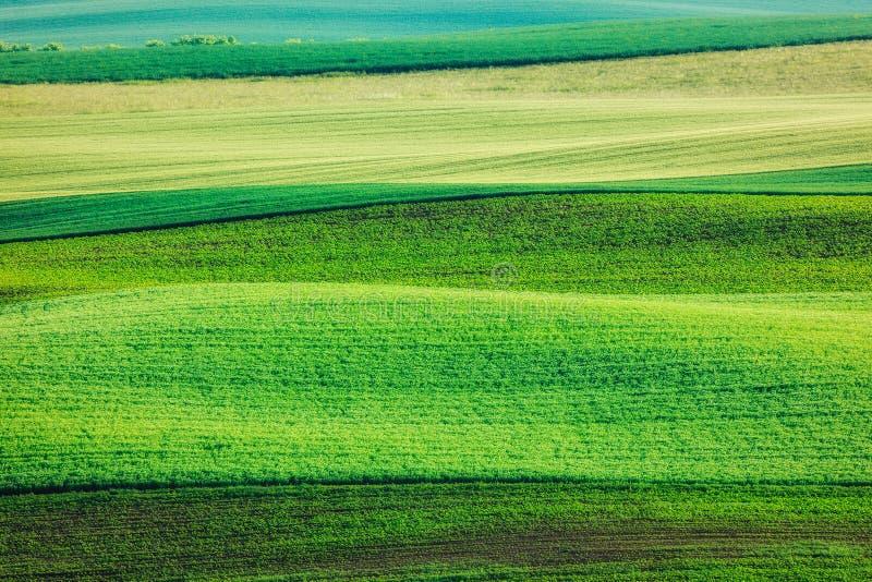 Download Modello Astratto Dei Campi Di Rotolamento Fotografia Stock - Immagine di arato, colline: 56887844