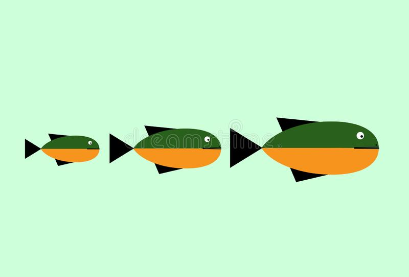 Modello astratto di logo di progettazione di vettore del pesce Concetto di progetto creativo Idea del ristorante dei frutti di ma illustrazione vettoriale