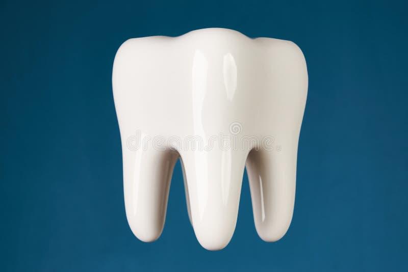 modello ceramico del dente del ermet isolato sul blu immagine stock