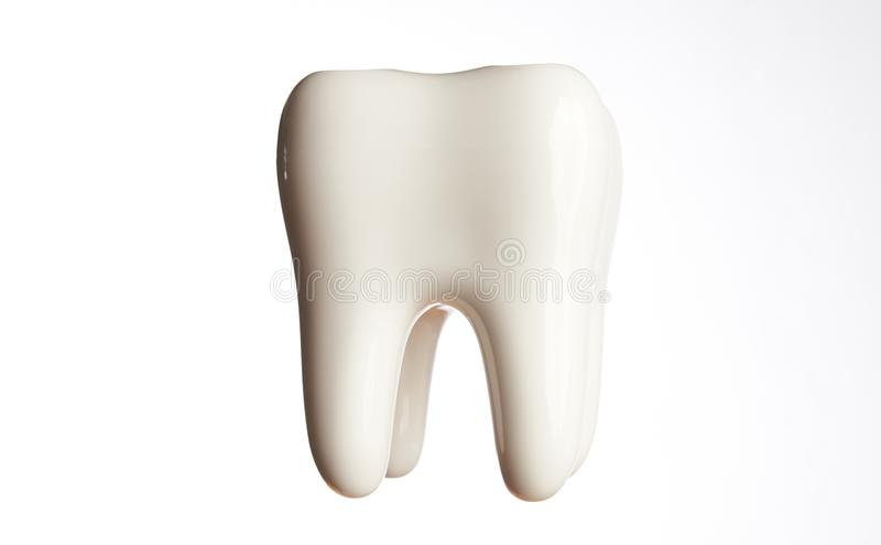 Modello ceramico del dente isolato su bianco immagini stock