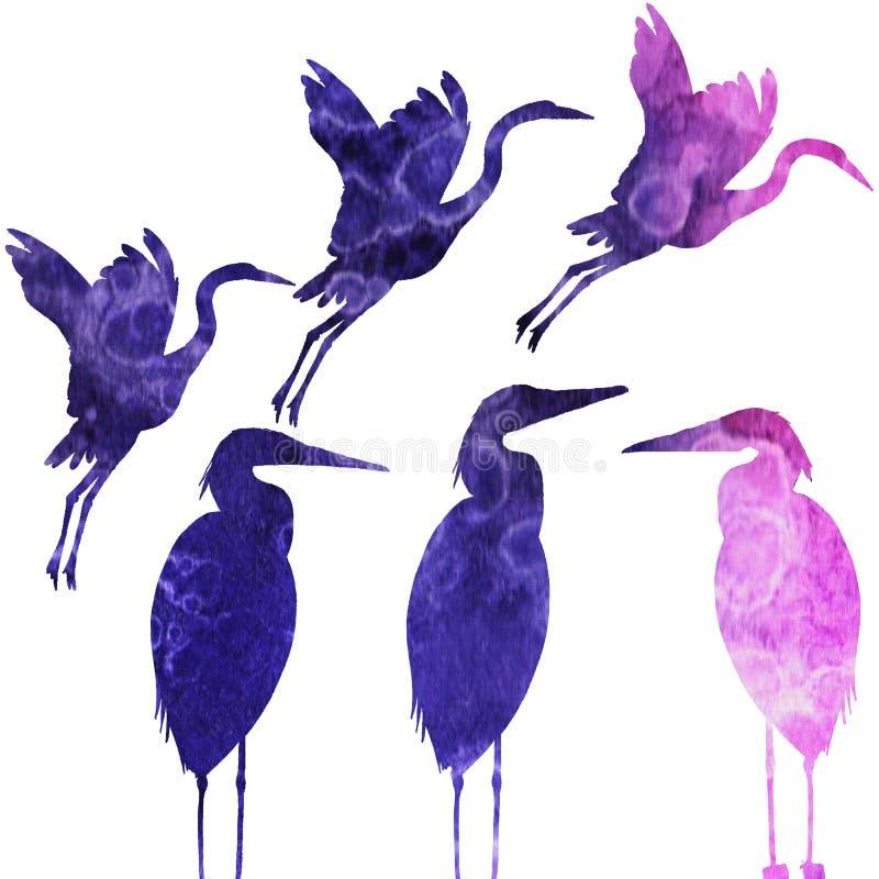 Modello con gli uccelli watercolor royalty illustrazione gratis