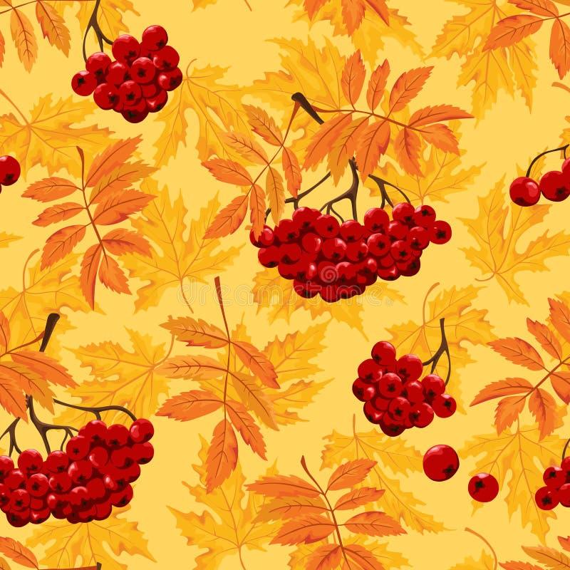 Modello con le foglie di autunno e ashberry senza cuciture Illustratuon di vettore royalty illustrazione gratis