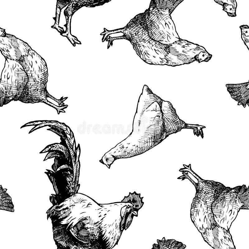 Modello con le galline ed i galli illustrazione vettoriale