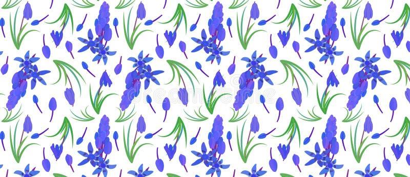 Modello con lo scilla della pianta Siberica siberiano di Scilla della scilla marina fiore della molla con le foglie ed il gambo illustrazione di stock