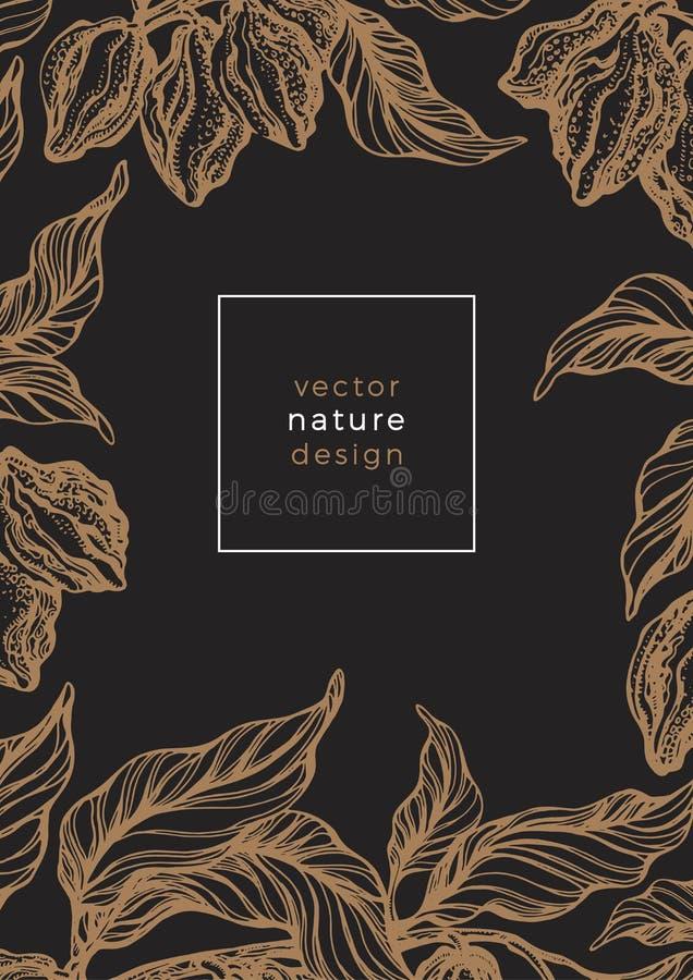Modello d'annata della natura Retro carta della pianta di cacao royalty illustrazione gratis