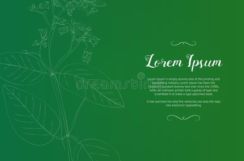 Modello d'annata di progettazione con una pianta verde immagini stock
