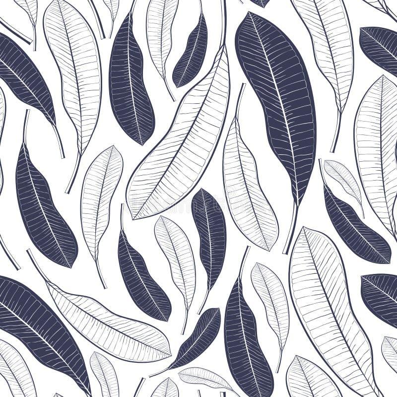 Modello d'avanguardia di estate con le foglie tropicali Foglie grafiche della frutta del mango isolate su fondo bianco Illustrazi immagine stock libera da diritti