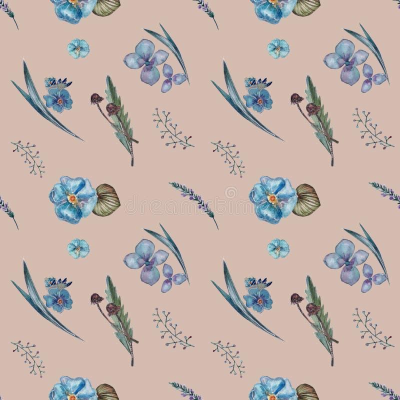 Modello dei fiori blu, erbe illustrazione di stock