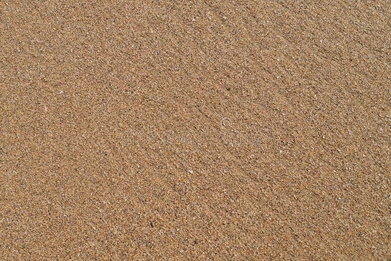 Modello dei grani di sabbia, colori marroni, approvazione per fondo immagini stock libere da diritti