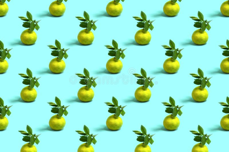 Modello dei mandarini su fondo blu-chiaro fotografie stock