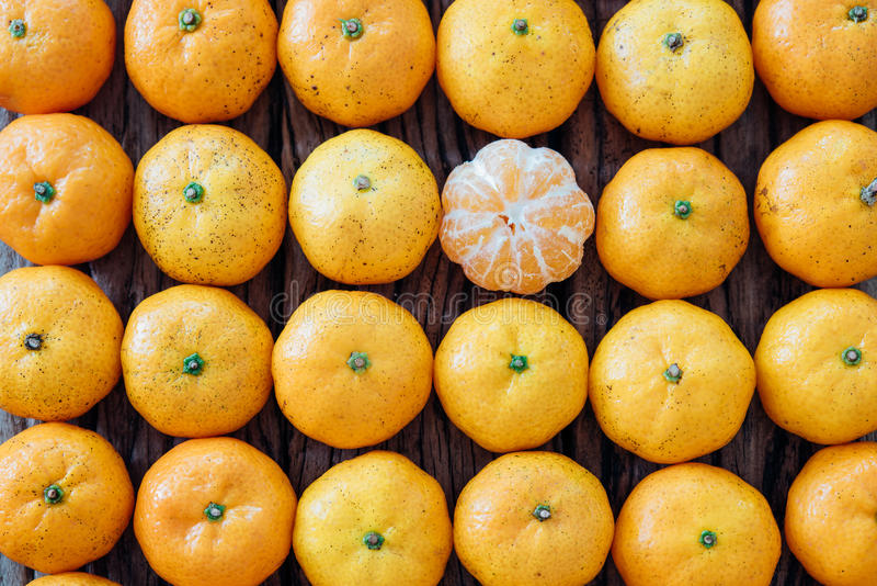 Modello dei molti arancia, frutta di natura morta fotografie stock libere da diritti