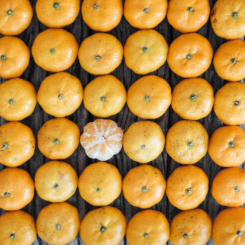 Modello dei molti arancia, frutta di natura morta immagine stock