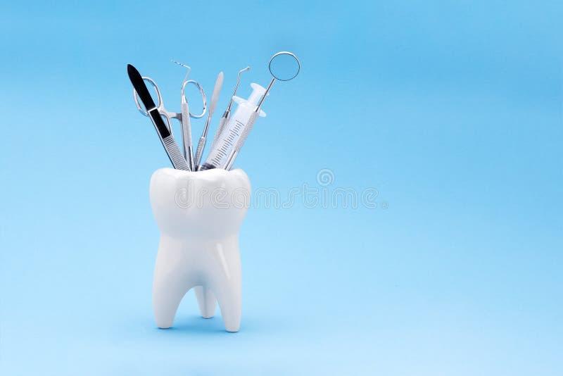 Modello del dente sotto forma di supporto con il insid dentario degli strumenti fotografia stock