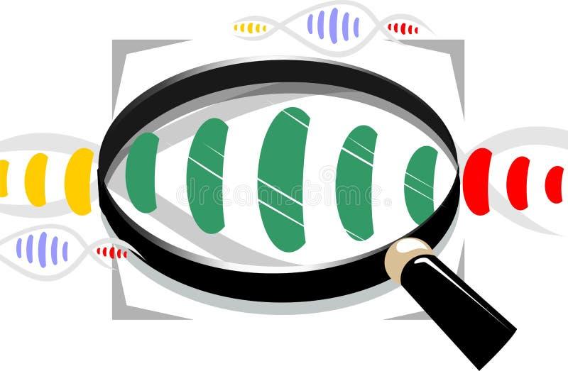 Modello del DNA illustrazione di stock