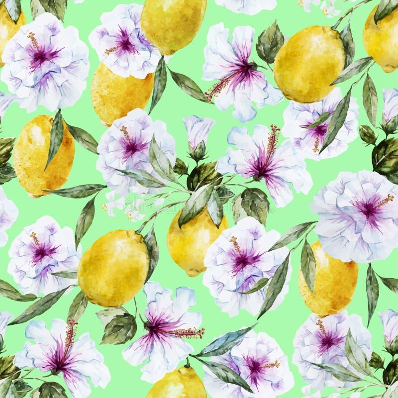 Modello del limone di vettore dell'acquerello illustrazione di stock