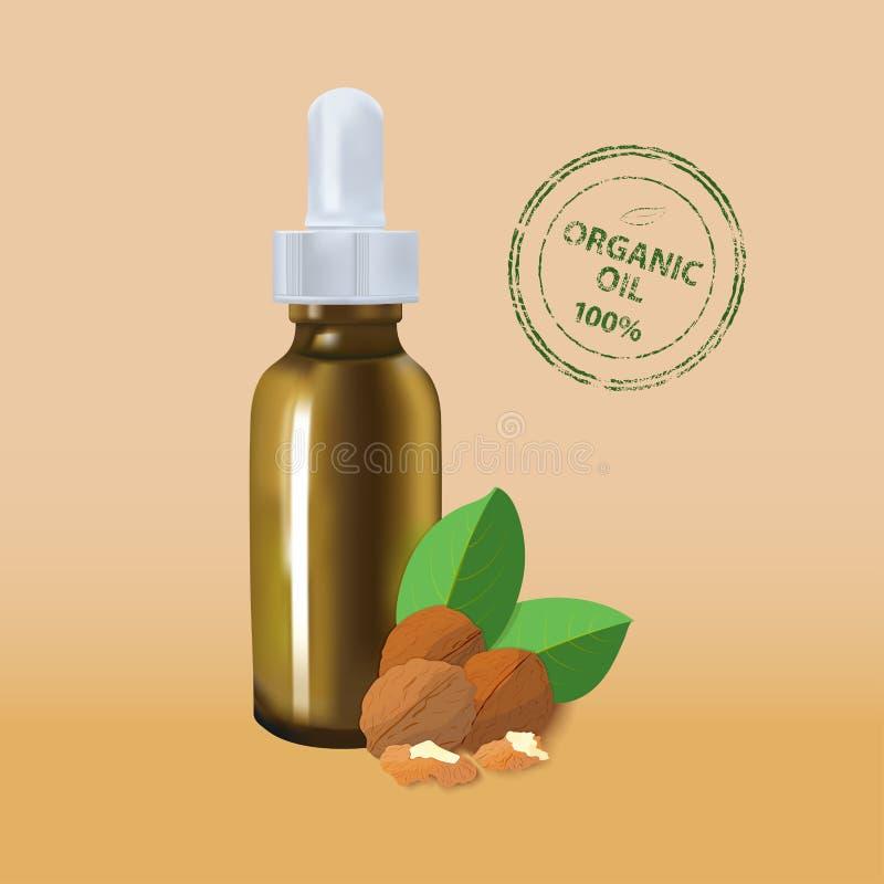 Modello del pacchetto dell'olio essenziale noce cosmetica con una bottiglia della pipetta L'idea dei cosmetici di disegno pubblic illustrazione di stock