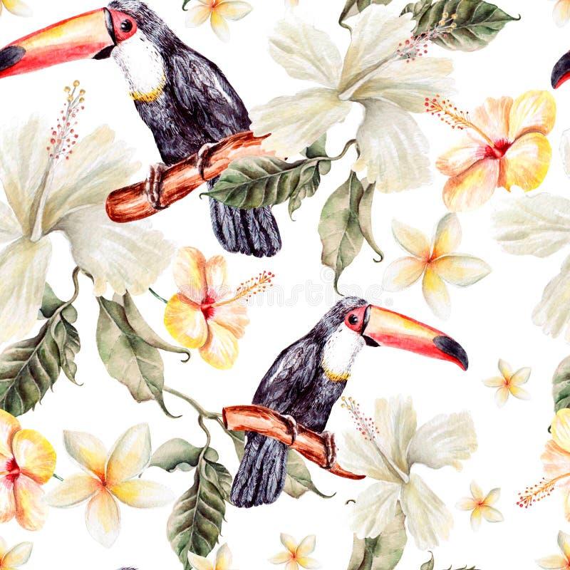 Modello dell'acquerello con i fiori ed il tucano tropicali dell'uccello illustrazione di stock