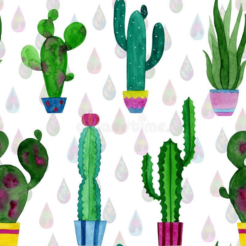 Modello dell'acquerello dei cactus e dei fiori dei succulenti illustrazione vettoriale