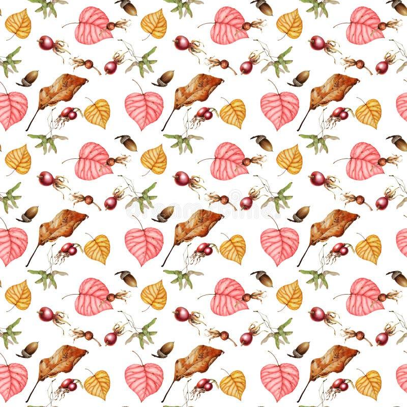Modello dell'acquerello di belle foglie e dei frutti di autunno royalty illustrazione gratis