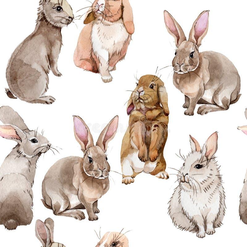Modello dell'animale selvatico del coniglio in uno stile dell'acquerello royalty illustrazione gratis