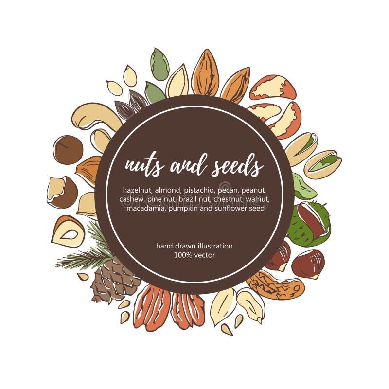 Modello dell'etichetta del cerchio di vettore con i dadi ed i semi di scarabocchio royalty illustrazione gratis